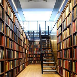 Библиотеки Нового Некоуза